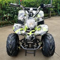 Квадроцикл GreenCamel Gobi K50 (36V 800W R7 Цепной привод)